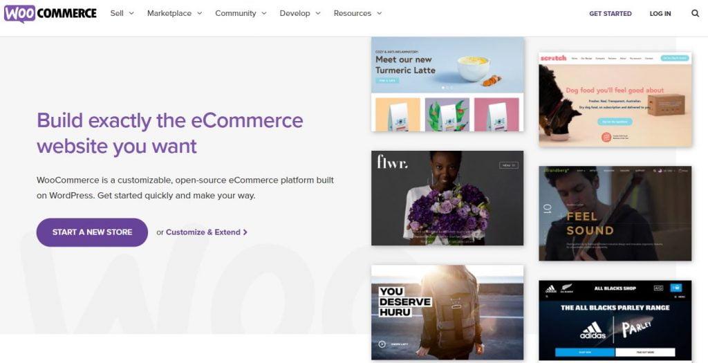 best wordpress plugins for ecommerce