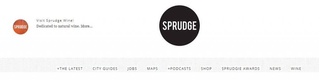 how much do bloggers make sprudge